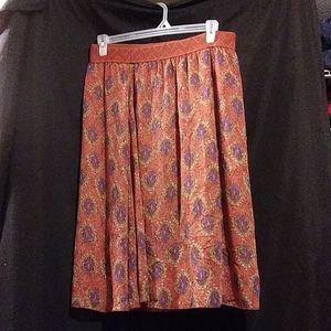 Skirt never wore